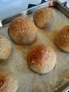 Whole-wheat-hamburger-buns 1